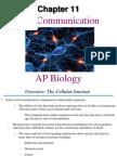 AP Bio Ch. 11 Cell Communication