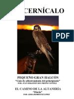 El Cernícalo pequeño gran halcón