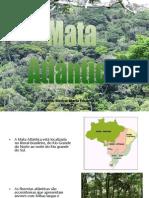 mataatlantica-111017120322-phpapp01