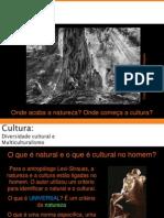 Diversidade-Cultural-e-Multiculturalismo(1).ppt