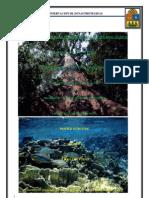Conservacion de Zonas Protegidas