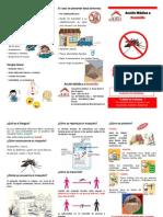 92031514 Dengue Triptico