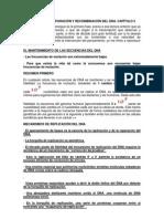 Replicación, reparación y recombinación del DNA. Capítulo 5