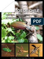 Insectos Chile 2012