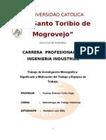 Monografía. Willy Montalvo