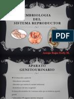 Embrologia Resproductora - Araujo Rojas