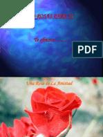 Rosas Parati