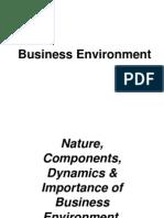 Business Environment Iipm