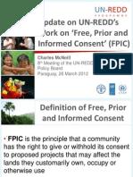 FPIC Progress Update_Charles McNeill