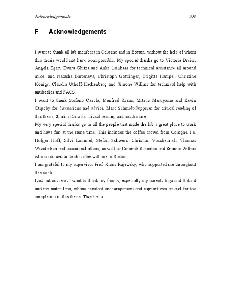 Friends speech essay