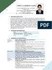 Curriculum Vitae - Wfcc Caritas 2012