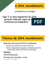 DNA Recombinante Enzimas de Restricao e Vetores Para GA
