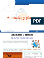 Animales y vegetales-criterios de clasificación