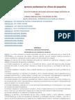 Reglamento para el ejercicio profesional en clínica de pequeños animales