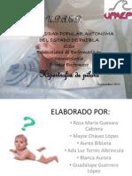 Place Enfermeria