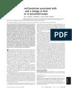 CI2.PDF