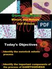 final introduction , gamatogenesis &female cycle.pptx