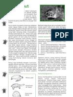 penyu_laut.pdf