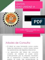 Arbol_consultas (1)