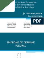 Sindrome Pleural