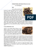Calin Marginean - Paralela Intre Pudra de Roscove Si Cacao