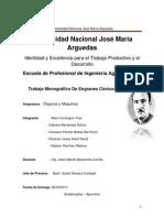 TRABAJO MONOGRÁFICO DE ENGRANES CÓNICOS.pdf