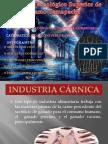 Sector Bebidas y Carnico 2010