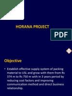 Horana Project Financials