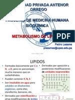 lípidos 1 2013.ppsx