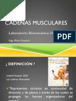 01 Cadenas Musculares (1)