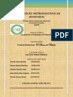 Proyecto Terminado Formulacion Dina