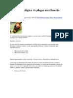 Control Ecológico de plagas en el huerto urbano