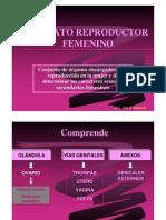 REPRODUCTOR FEMENINO 1