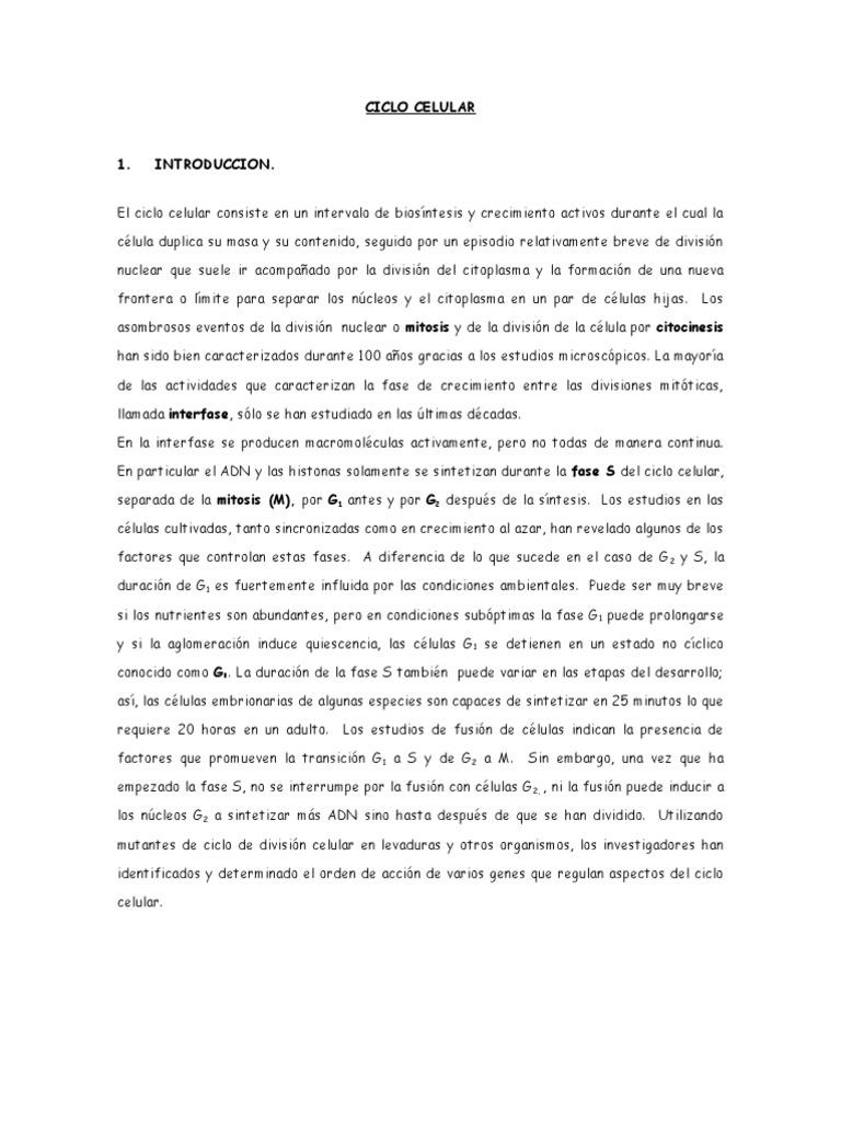 Guia Ciclo Celular Mitosis Meiosis Y Gametogenesis Enfermeria