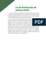 Proceso de Producción de celulosa kraft