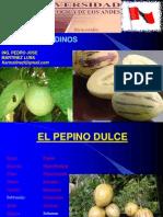 Cultivos Andinos Clase 15 Pepino Dulce