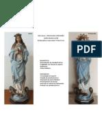 Imaculada Conceição - Processo