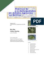 Plagas y Enfermedades de Arboles Agriolas en Bolivia