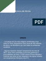 Fisiologia de Peces