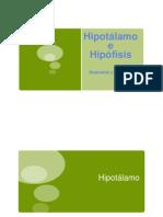 Hipotalamo e Hipofisis
