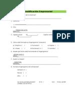Plantilla Diagnostico-Empresarial