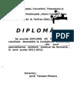 Diploma Merite2012
