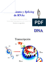 splicing of rnas