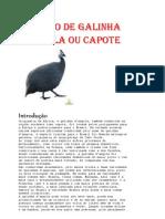 Criação de Galinha d'Angola ou Capote