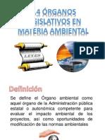 1.4 Órganos legislativos en materia ambiental 1.pptx