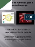 A utilização de nutrientes para a produção de energia 6A Ruben