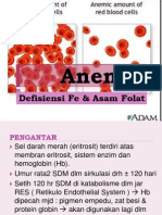 Anemia Def Fe & Asam Folat