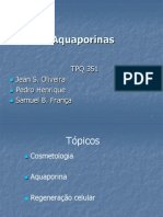 Aqua Porinas