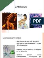 5.-MICROORGANISMOS