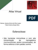 Atlas Hematologia